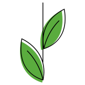 Icon Growth Green